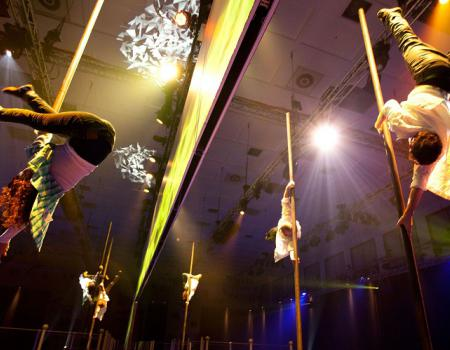 vertical poles